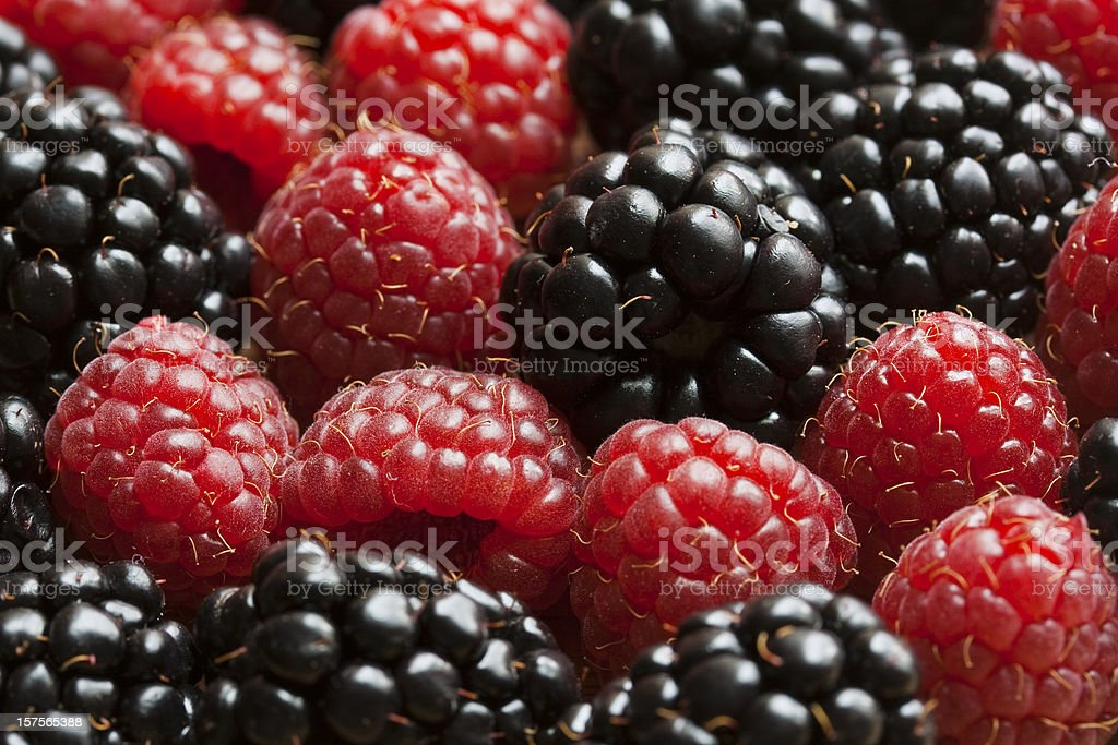 Red Raspberry and Blackberry Closeup royalty-free stock photo