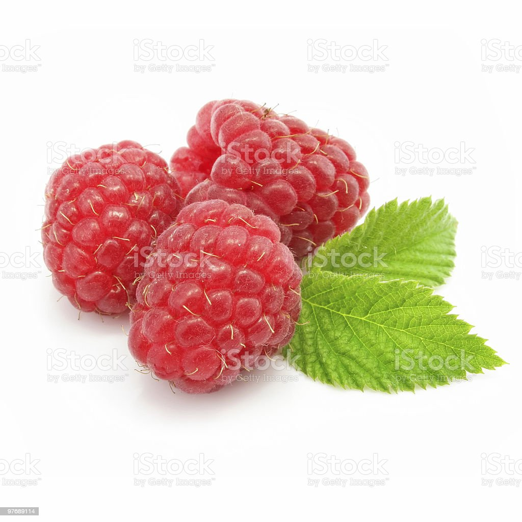 red raspberry fruits isolated royalty-free stock photo