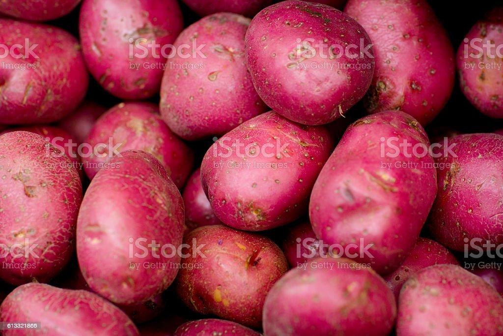 Red raw sweet potatoes. stock photo