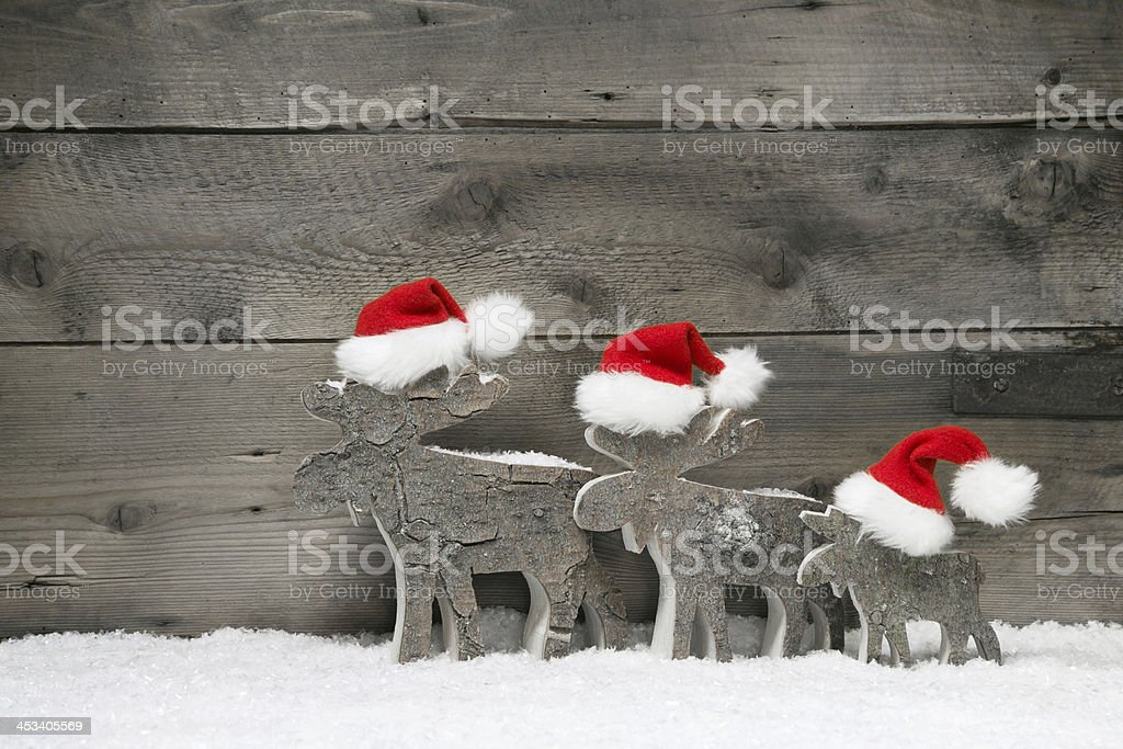 Red reindeer wearing a santa hat on grey wooden. stock photo