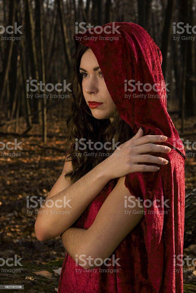 Red Riding Hood comfort stock photo