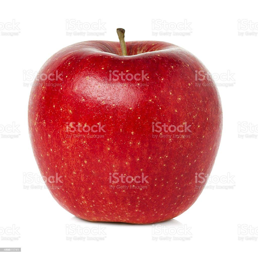 Red ripe apple stock photo