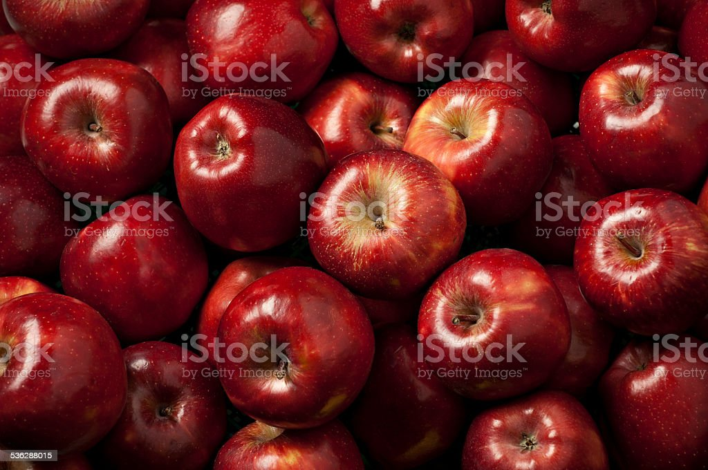 red ripe apples stock photo