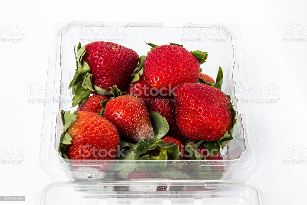 Red ripe strawberries rotten in plastic box. stock photo