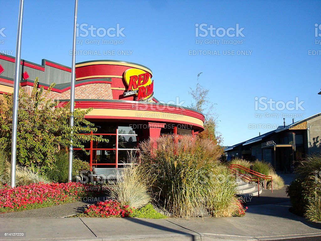 Red Robin stock photo
