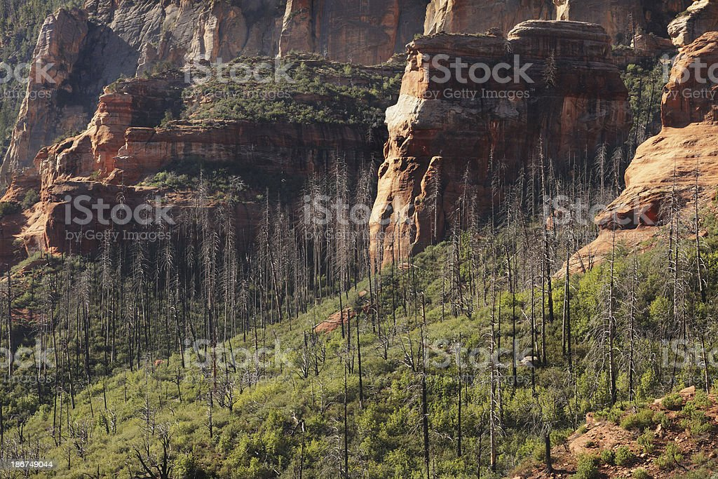 Red Rock Butte Desert Canyon Landscape stock photo