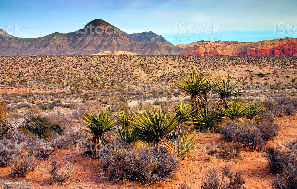 Red Rock Canyon in the state of Nevada stock photo
