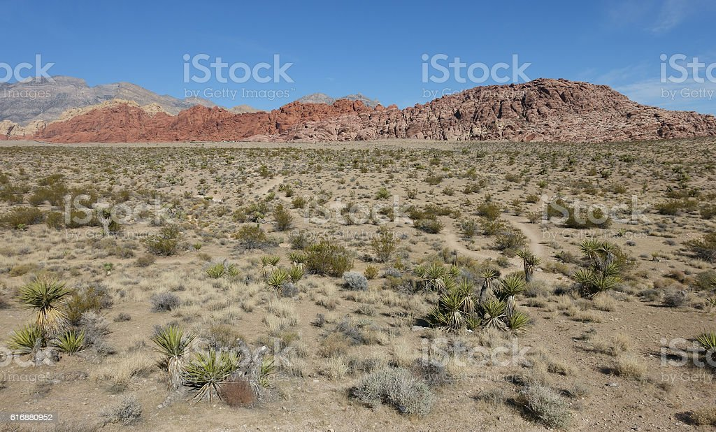 Red Rock Canyon landscape stock photo