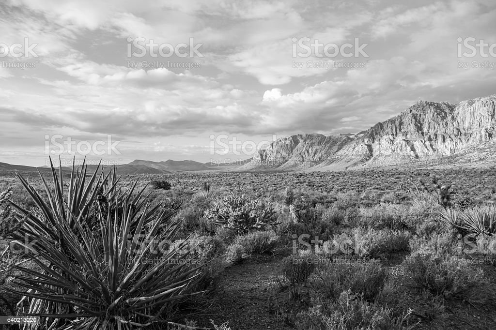 Red Rock Canyon Nevada Black and White stock photo