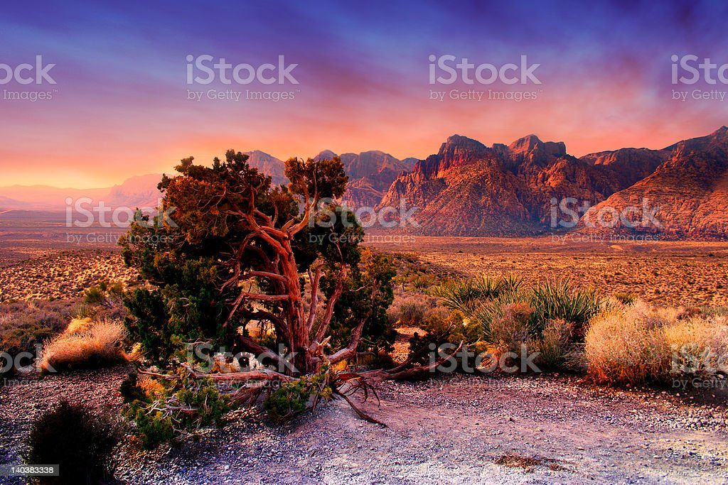 Red Rock Canyon, Nevada royalty-free stock photo