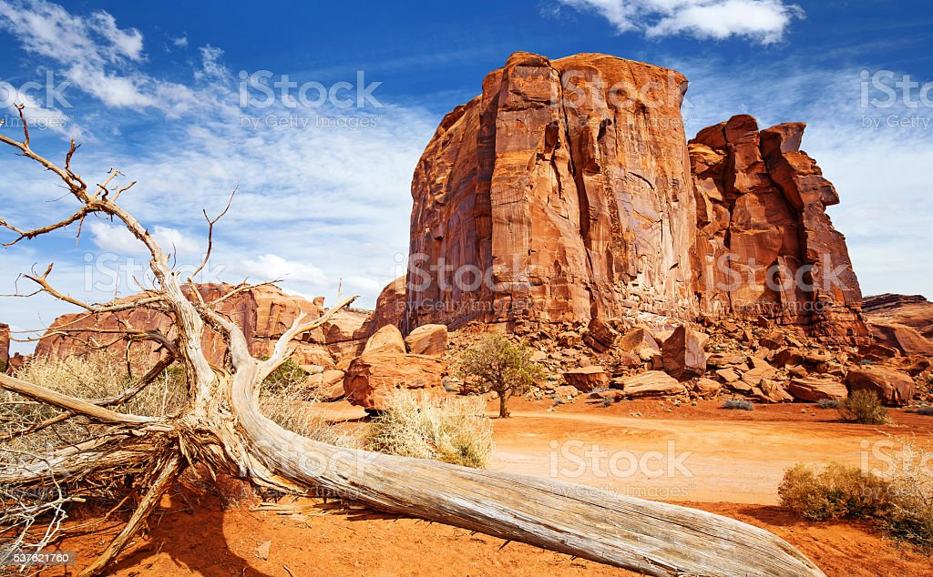 red rock formation and dead trunk in the foreground stock photo