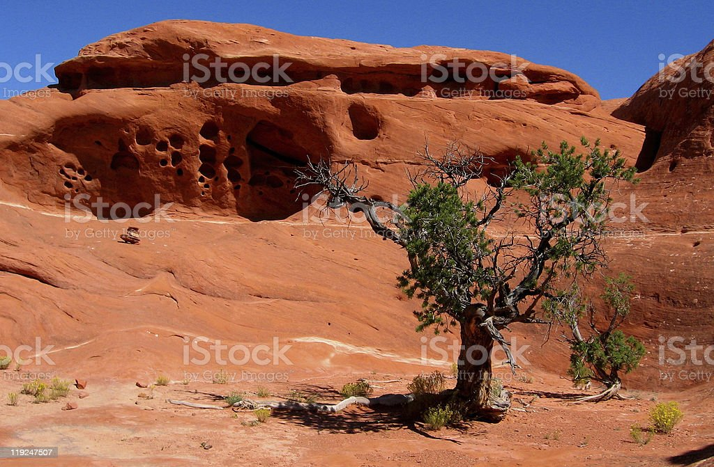 Red rock formation in Canyonlands NP royalty-free stock photo