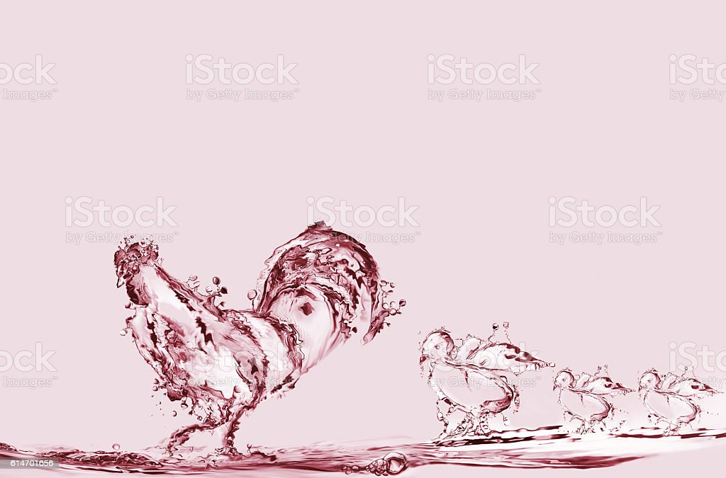 Red Rooster and Chicks royalty-free stock photo