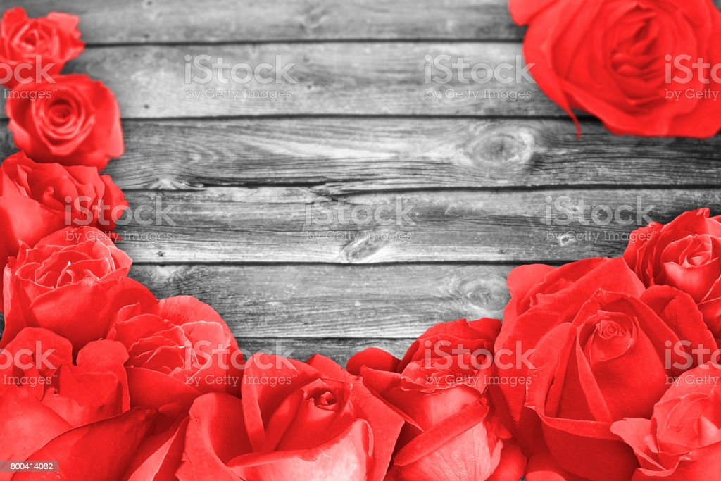 Red rose blossem over an very old and grey wood surface stock photo