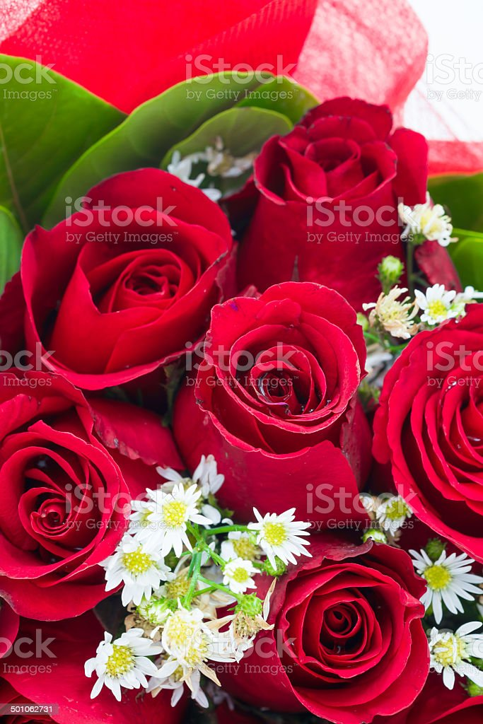 Red rose bouquet royalty-free stock photo