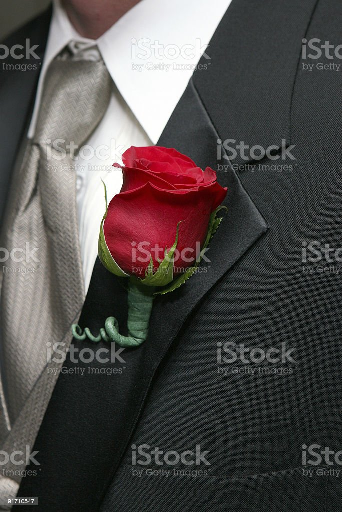 Red Rose Boutonniere royalty-free stock photo