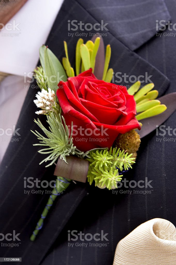 Red Rose Button Hole on Grooms wedding jacket stock photo