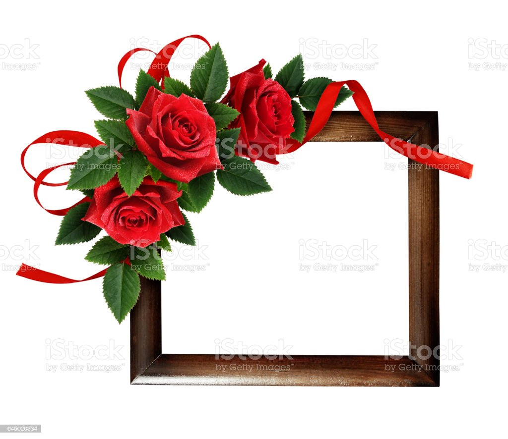 Red rose flowers and silk ribbon bow stock photo