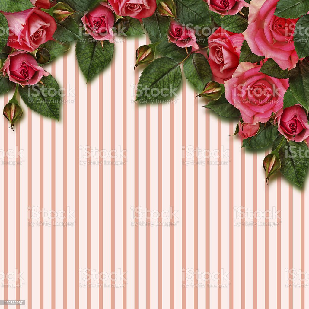 Red rose flowers arrangement and frame stock photo