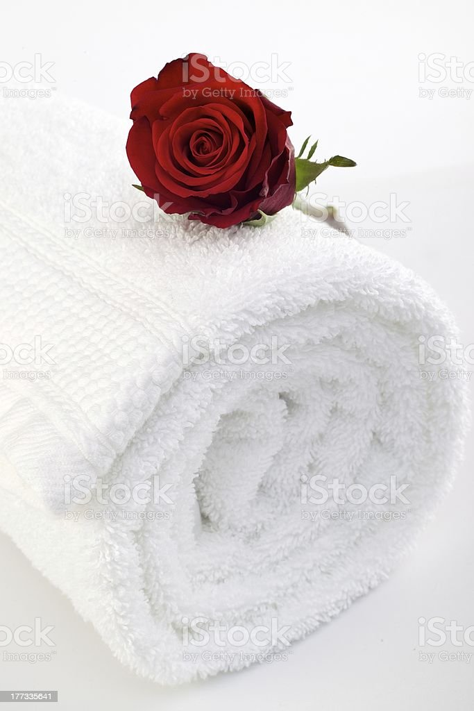 Red rose on rolled white towel stock photo