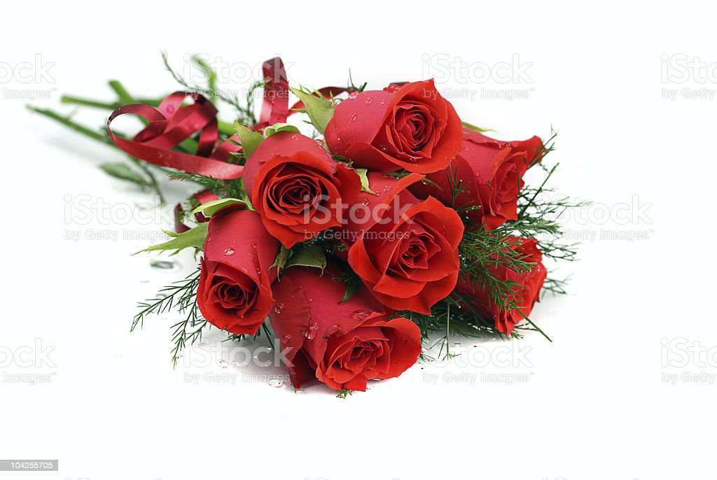 Red rose posy with water droplets, isolated on white royalty-free stock photo