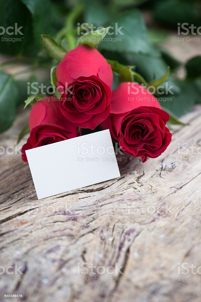 Red rose with blank space for lovely message fopr Valentine stock photo