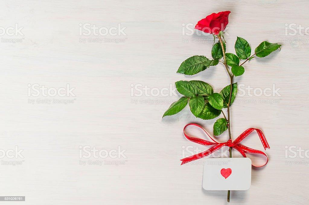 Роза одна для открытки