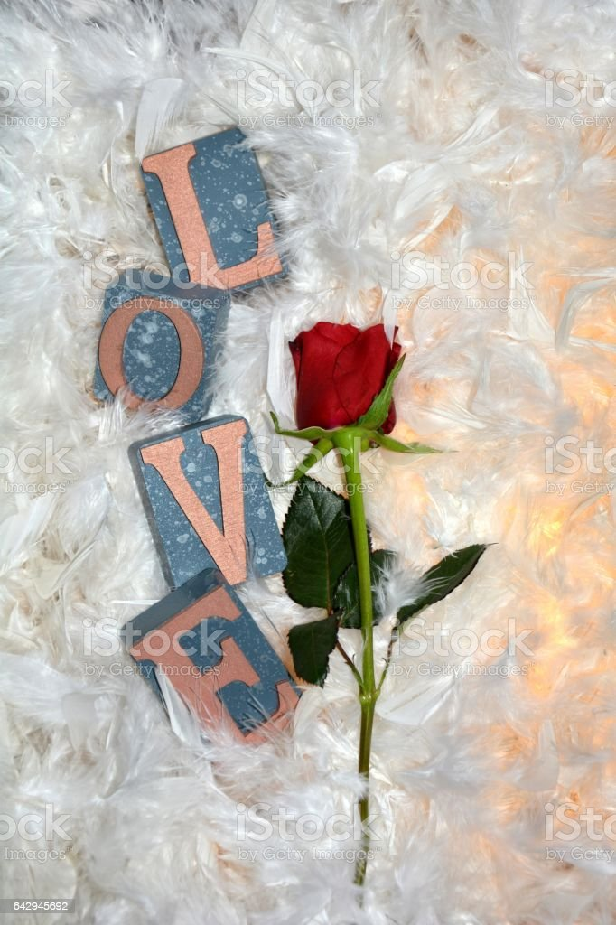 A  red rose  with Love to stones stock photo