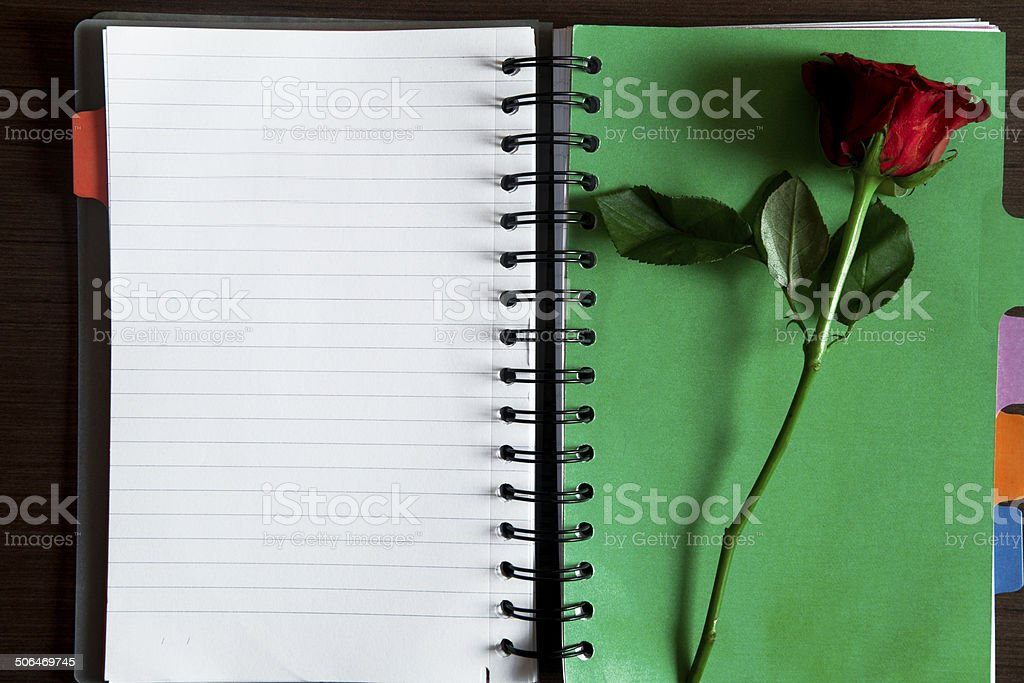 Red rose with open diary on the table stock photo