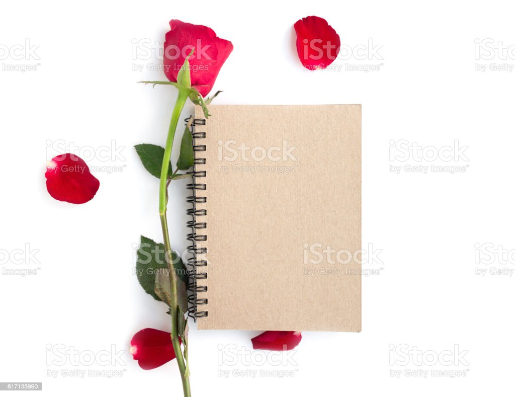 Red rose with petals and brown notebook isolated on white background stock photo