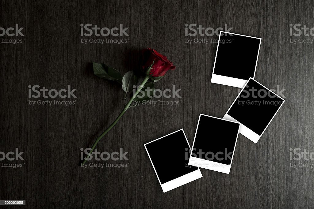 Red rose with picture frames on brown wooden table royalty-free stock photo
