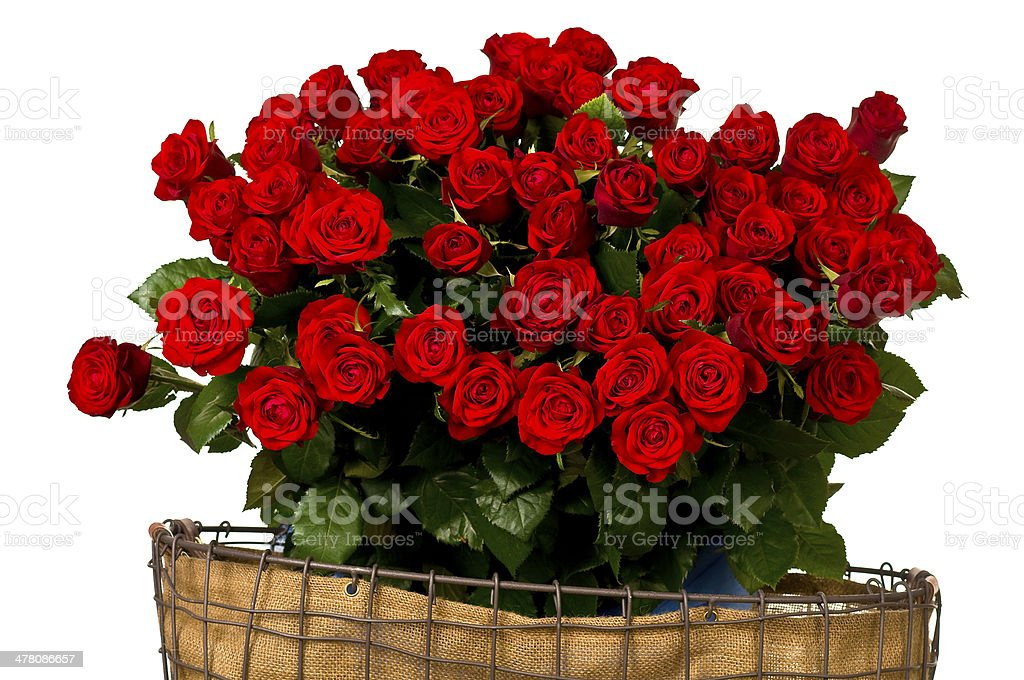 Red roses, a huge bouquet of flowers . royalty-free stock photo