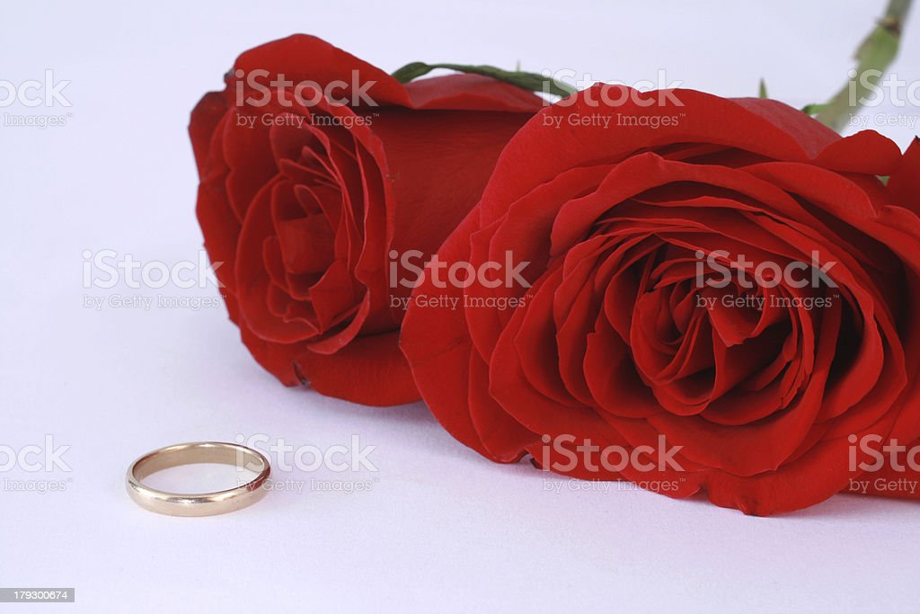 Red Roses and Ring stock photo