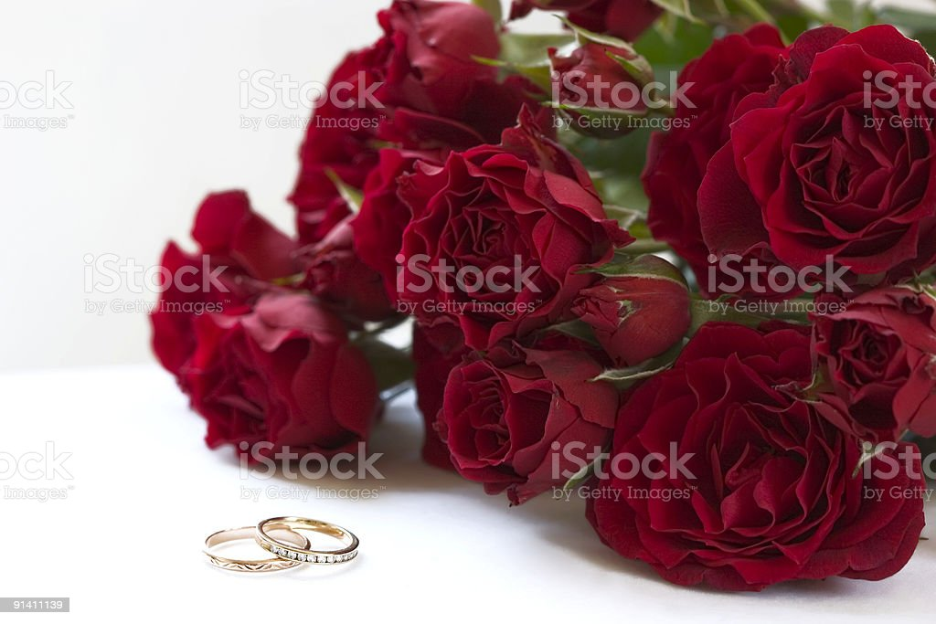 Red roses and rings royalty-free stock photo