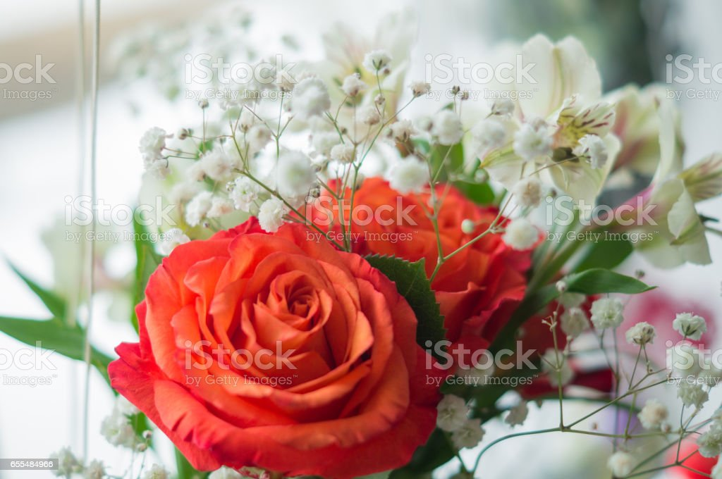 red roses and white Alstroemeria stock photo