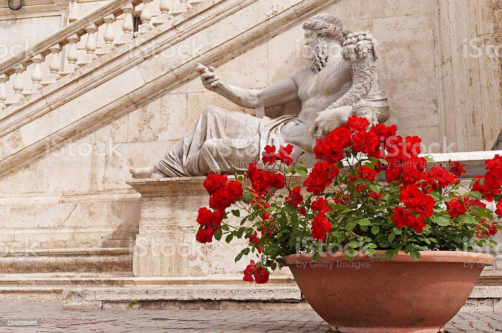 Red Roses at Piazza del Campidoglio in Rome stock photo