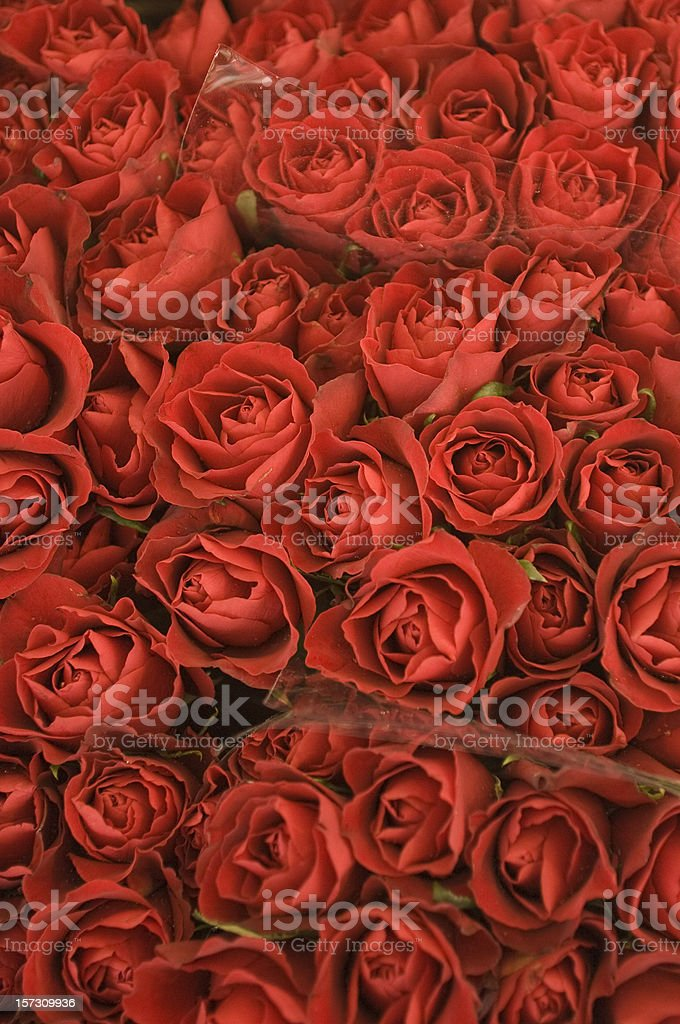 Red Roses, Bouquet, Pattern, Vivid Background royalty-free stock photo