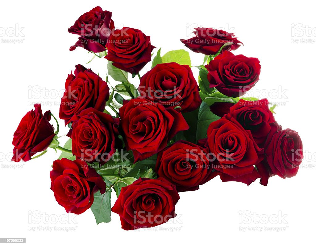 Red Roses Bouquet royalty-free stock photo