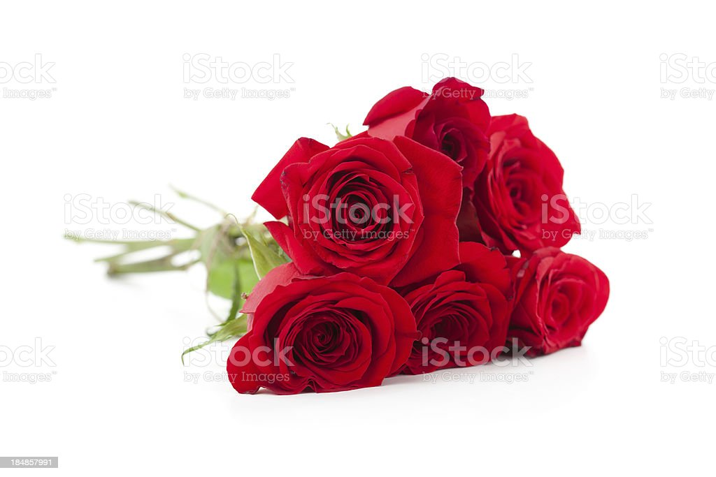 Red Roses bunch royalty-free stock photo