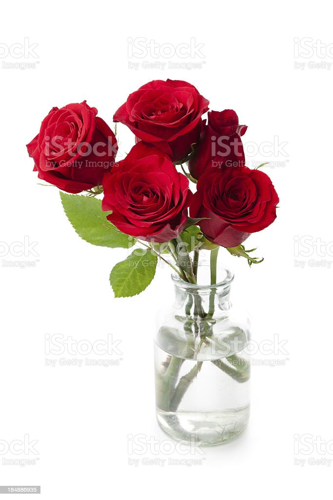 Red Roses in a vase royalty-free stock photo