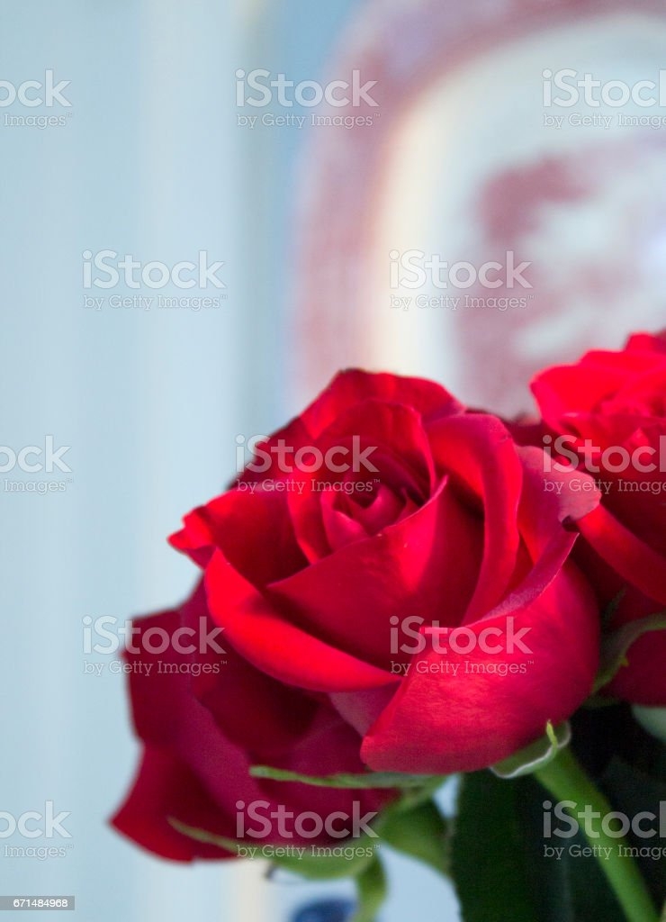 Red Roses with Platter stock photo