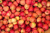 Red Royal Gala Apples