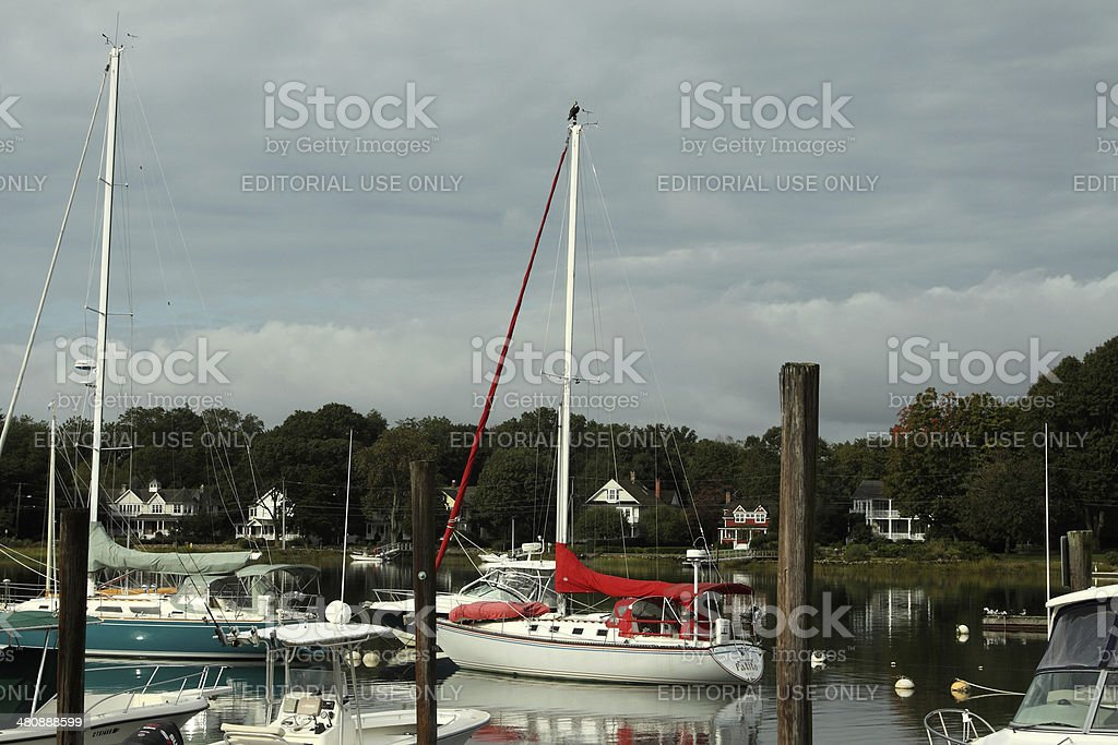 red sail boat stock photo