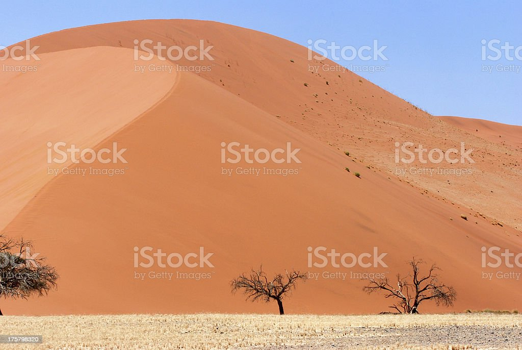 Red sand Dune in Sossuvlei, Namibia stock photo