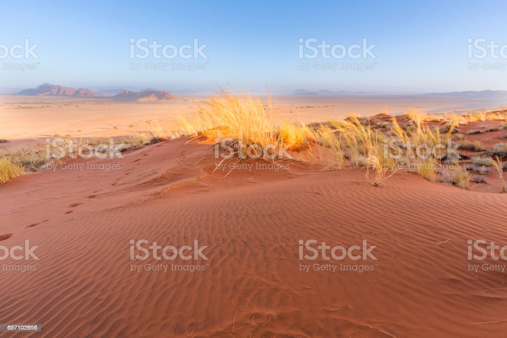 Red sand dune stock photo