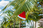 Red Santa's hat hanging on palm tree at the tropical
