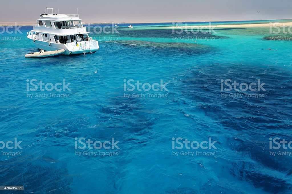 Red Sea joy stock photo