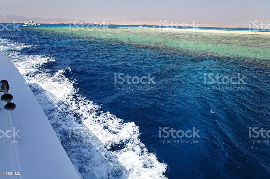 Red Sea safari stock photo