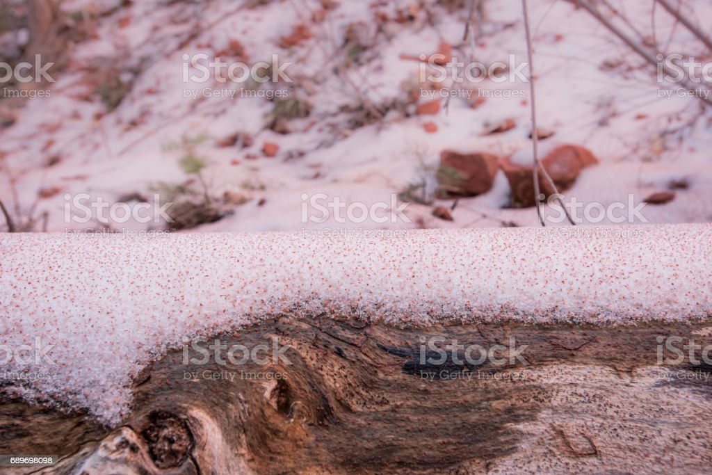 Red Sediment Settles on Snowy Log stock photo