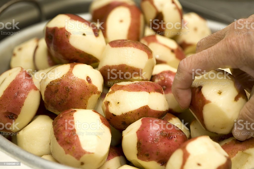 Red Skin Potatoes royalty-free stock photo